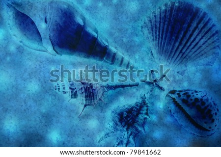 seashells on the sand and pebble lying in the paradise water - stock photo
