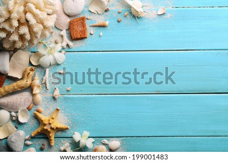Seashells on wooden background  - stock photo