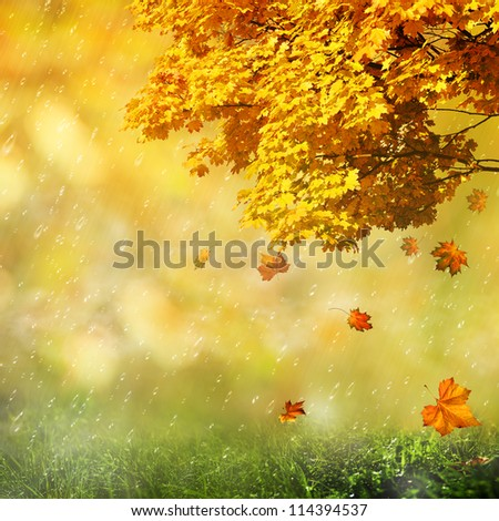 Seasonal abstract backgrounds for your design - stock photo