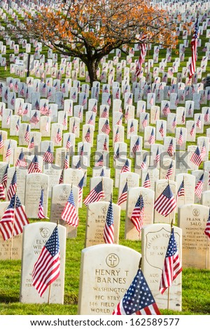 "SEATTLE - NOV 11: Headstones with American Flags, Veterans Memorial Cemetery at Evergreen Washelli Memorial Park, the ""Arlington of the West,"" in Seattle Washington on November 11, 2011, Veterans Day. - stock photo"