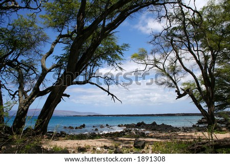 Secluded beach, Maui, Hawaii - stock photo
