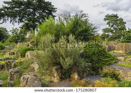 Section of the rock garden in Kew botanical garden. Richmond, London, UK - stock photo