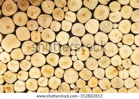 Section plane of natural wood log wall for decoration - stock photo
