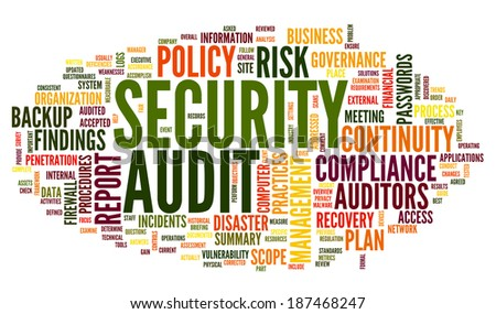 Security audit  in word tag cloud on white - stock photo
