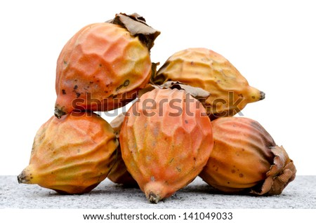 Seed of  palm with white background - stock photo