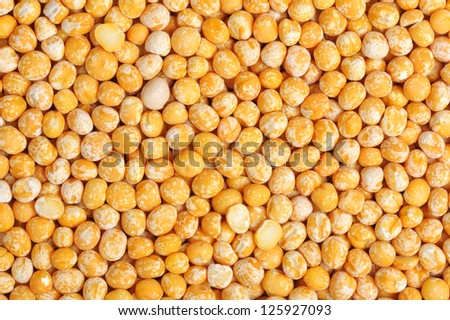 Seed of Pea on a white background, close-up. - stock photo