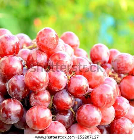 Seedless purple grape. - stock photo