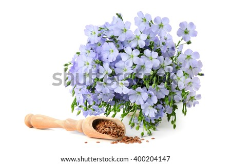 seeds flax and flowers isolated on white background - stock photo
