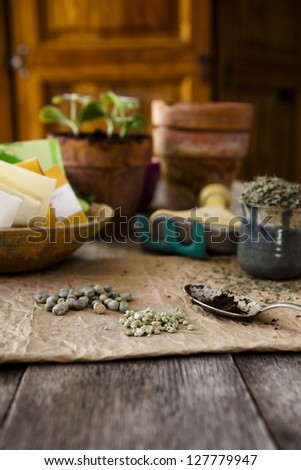 Seeds for planting in spring, seed packets and pots in the background. - stock photo
