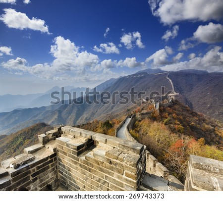 Segment of the Great Wall of China high in Mutianyu mountains going atop of range and surrounded by yellow autumn trees - stock photo