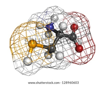 Selenocysteine (Sec, U) amino acid, molecular model. Amino acids are the building blocks of all proteins. Atoms are represented as spheres with conventional color coding: hydrogen (white), etc - stock photo