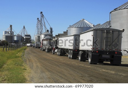 Semi trucks line up to haul grain from the silos. - stock photo