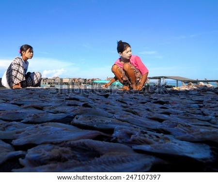 SEMPORNA, MALAYSIA - JULY 5 : Unidentified Sea Bajau's girls dry the fish during sunny day on July 5, 2009 in Sabah, Malaysia. The Sea Gypsies are sea nomads that move from one place to another. - stock photo