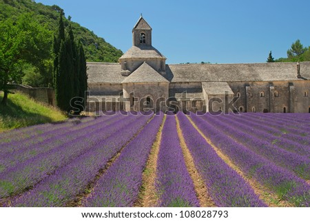 Senanque Abbey is a Cistercian abbey near the village of Gordes in the departement of the Vaucluse in Provence, France. - stock photo