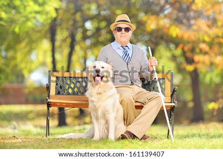 Senior blind gentleman sitting on a wooden bench with his labrador retriever dog, in a park - stock photo