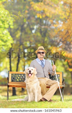 Senior blind man sitting on a wooden bench with his labrador retriever dog, in a park - stock photo