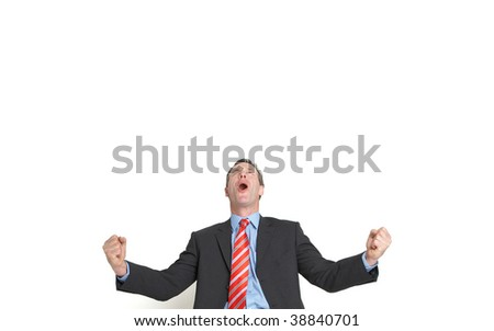 senior businessman celebrating with copy space - stock photo
