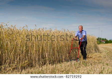 Senior businessman embarking on a new challenge as he starts to harvest his field of ripe golden grain using just a push type manual lawnmower filled with determination to succeed - stock photo