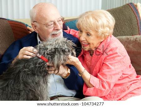Senior couple at home on the couch, playing with their adorable mixed breed dog. - stock photo