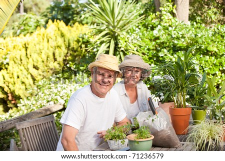 Senior couple sitting in their garden - stock photo