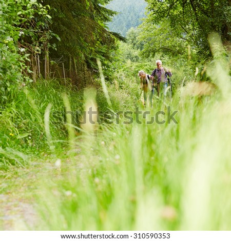 Senior couple walking on hiking trail in forest in summer - stock photo
