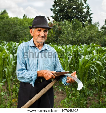 Senior farmer sharpening his scythe with a corn field and a forest in the background - stock photo