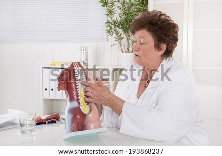 Senior female doctor explaining the human body with torso. Spinal column. - stock photo