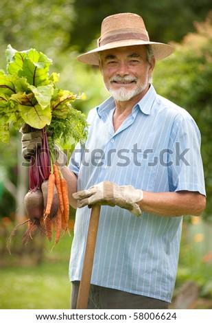 Senior gardener - stock photo
