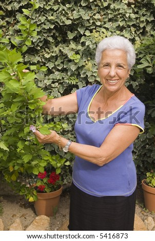 senior lady looking after her plants - stock photo