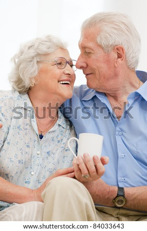 Senior loving couple enjoy together their retirement at home - stock photo