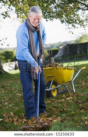 Senior man collecting autumn leaves in garden - stock photo