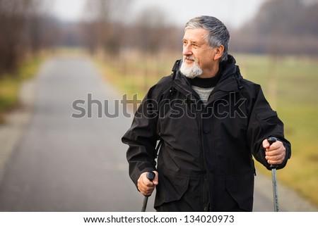 Senior man nordic walking, enjoying the outdoors - stock photo