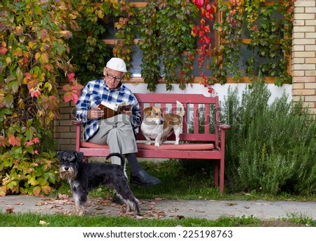 Senior man reading book in courtyard while dogs making his company - stock photo