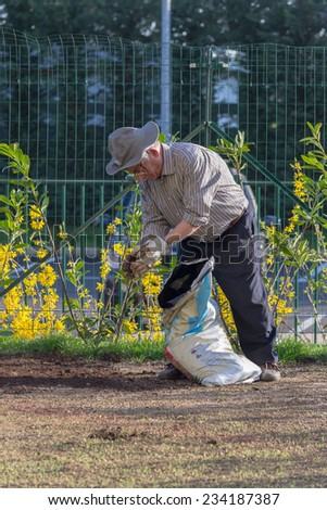 Senior man with hat working in his home garden. - stock photo
