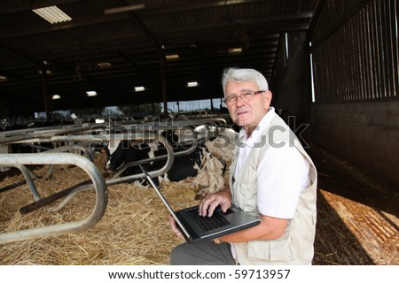 Senior man with laptop in barn - stock photo