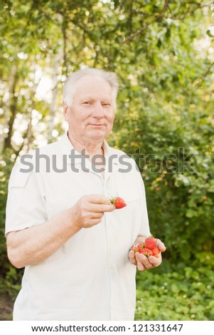 senior man with strawberry - stock photo