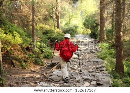 senior nordic walking - stock photo