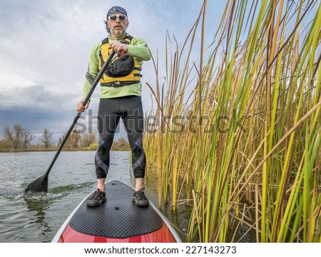 senior paddler in life jacket enjoying stand up paddling on lake, fall scenery with cattail in Fort Collins, Colorado - stock photo