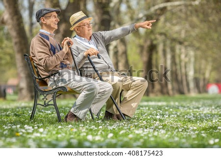 Senior showing something in the distance to his friend seated on a bench in park - stock photo