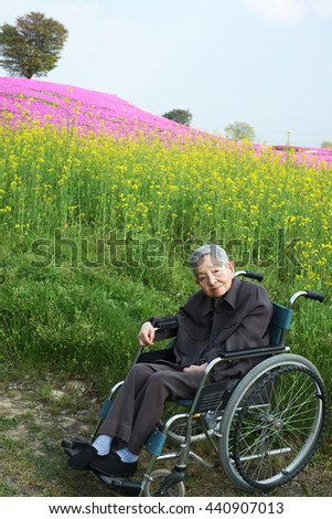 Senior woman in a wheelchair in the flower park - stock photo