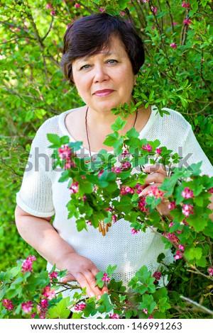 Senior woman in spring blooming bush - stock photo