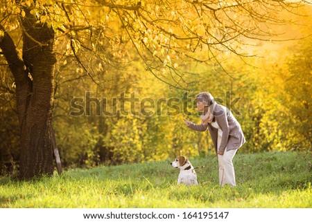 Senior woman walking her beagle dog in countryside - stock photo