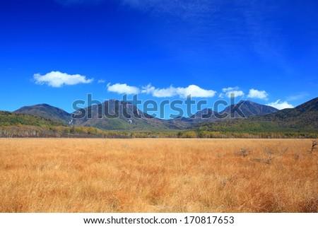 Senjogahara plateau of autumn in Nikko, Tochigi, Japan - stock photo