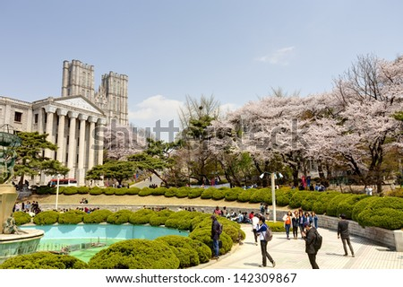 SEOUL, KOREA-APRIL 18: Students are walking and taking pictures at the campus street which is lined with cherry trees of full blossoms in Kyung Hee University on April 18, 2013 in Seoul, Korea. - stock photo