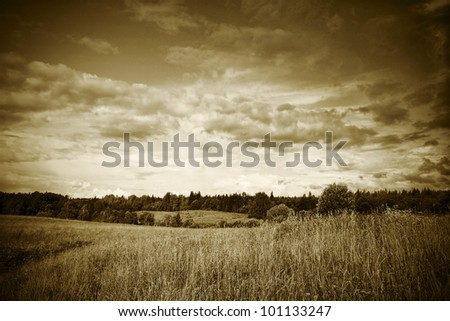 sepia toned landscape with trees grass and flowers under cloudy sunset dramatic sky - stock photo