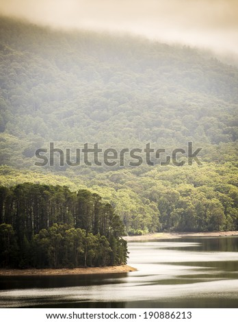 Serene forest with mist looking out over a calm lake - stock photo