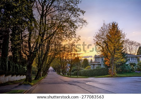Serene suburban street with houses and golden trees at sunset - stock photo
