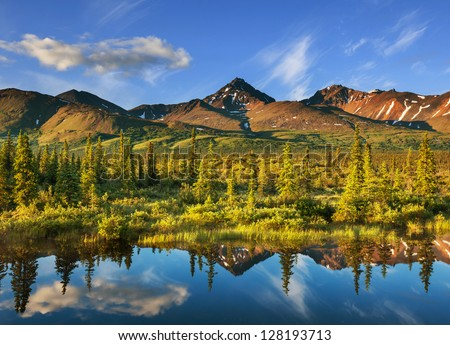 Serenity lake in tundra on Alaska - stock photo