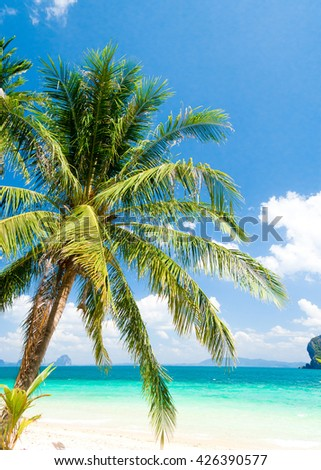 Serenity Shore Palm View  - stock photo