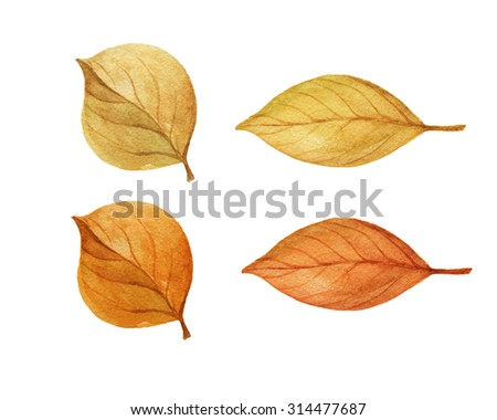 Set of autumn leaves isolated on white background. Watercolor illustration hand drawn. - stock photo
